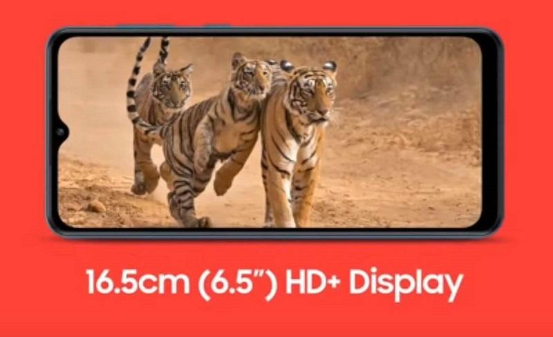 Samsung Galaxy M12 Display